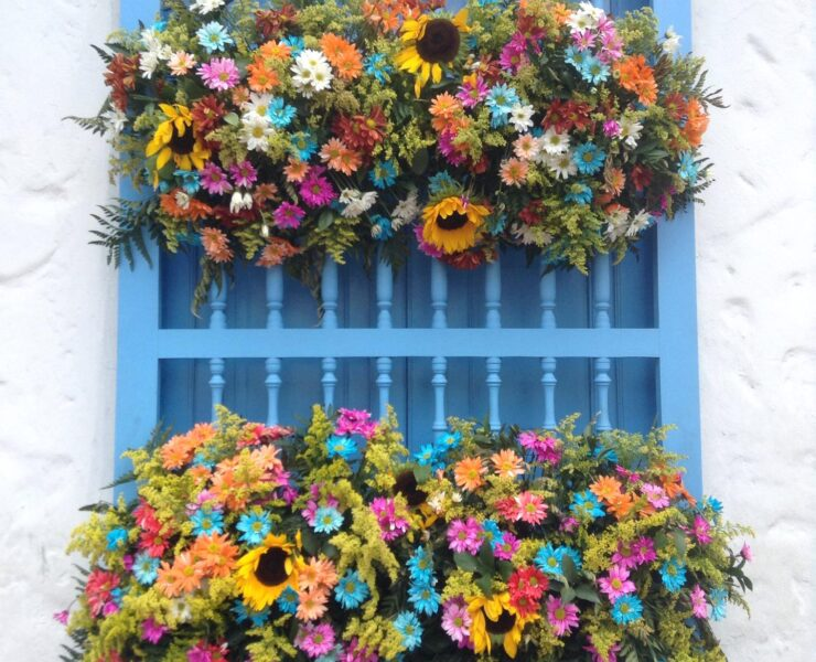 Floral window display in Medellin, Colombia