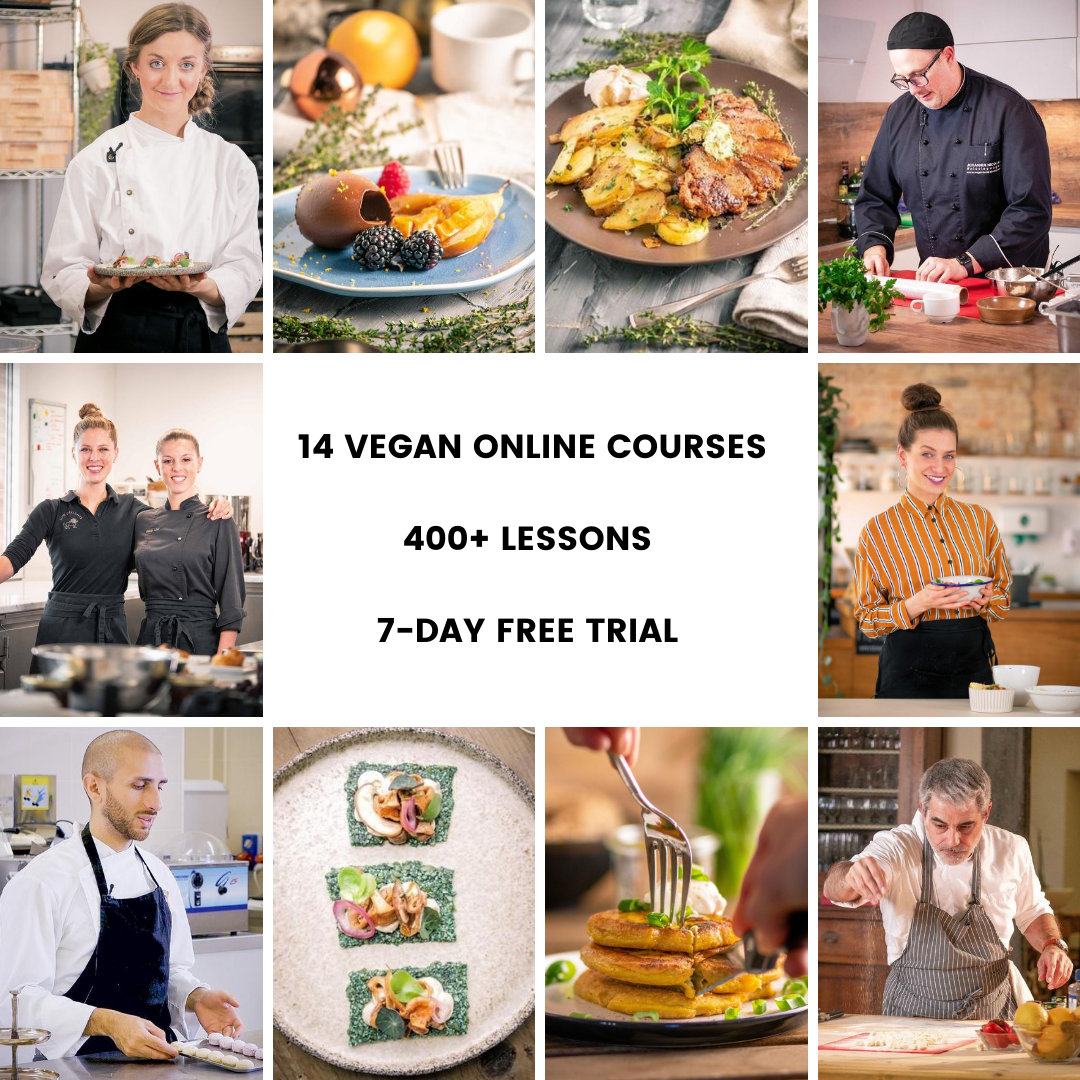veecoco the best vegan online cooking courses