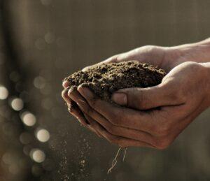 compost in someones hands