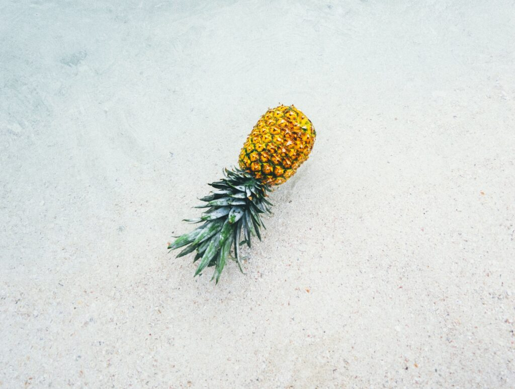 pineapple floating in the sea